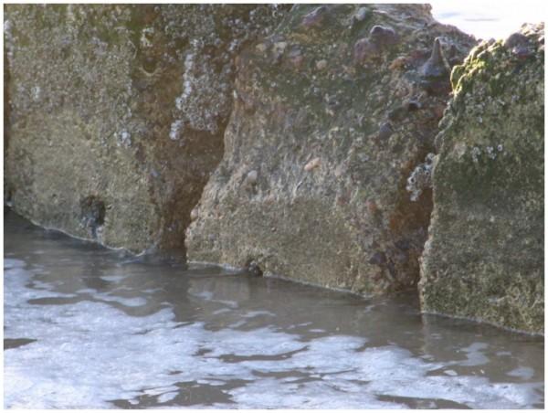 Sand und Meer 5
