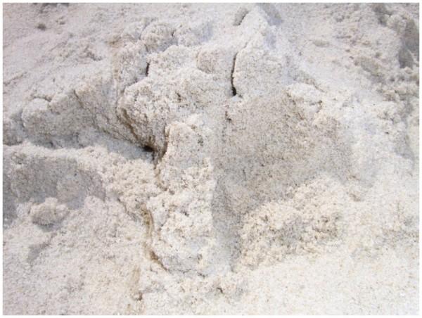 Sand und Meer 13