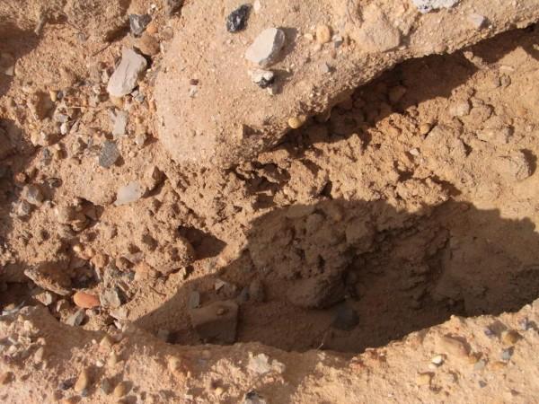 Sand und Meer 46