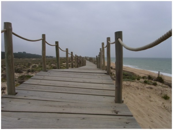 Sand und Meer 25