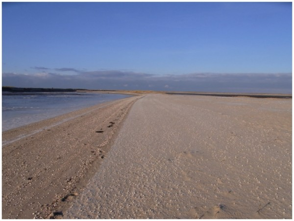 Sand und Meer 36
