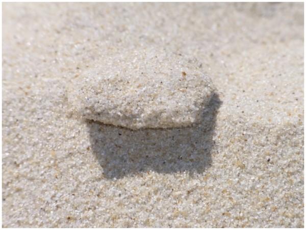 Sand und Meer 10